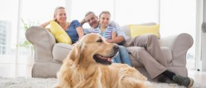 Happy Family with Dog in clean home